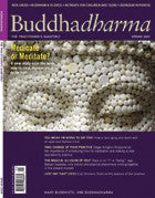 Buddhadharma - The Practitioner's Quarterly - Spring 2009