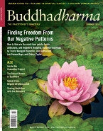 Buddhadharma - The Practitioner's Quarterly - Summer 2011