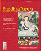 Buddhadharma - The Practitioner's Quarterly - Spring 2004