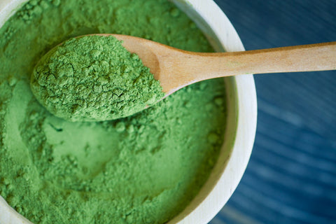 A spoonful of spirulina powder on top of a bowl.