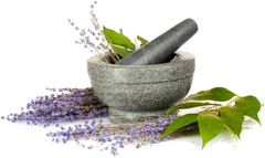 A pile of lavender sprigs around a mortar and pestle