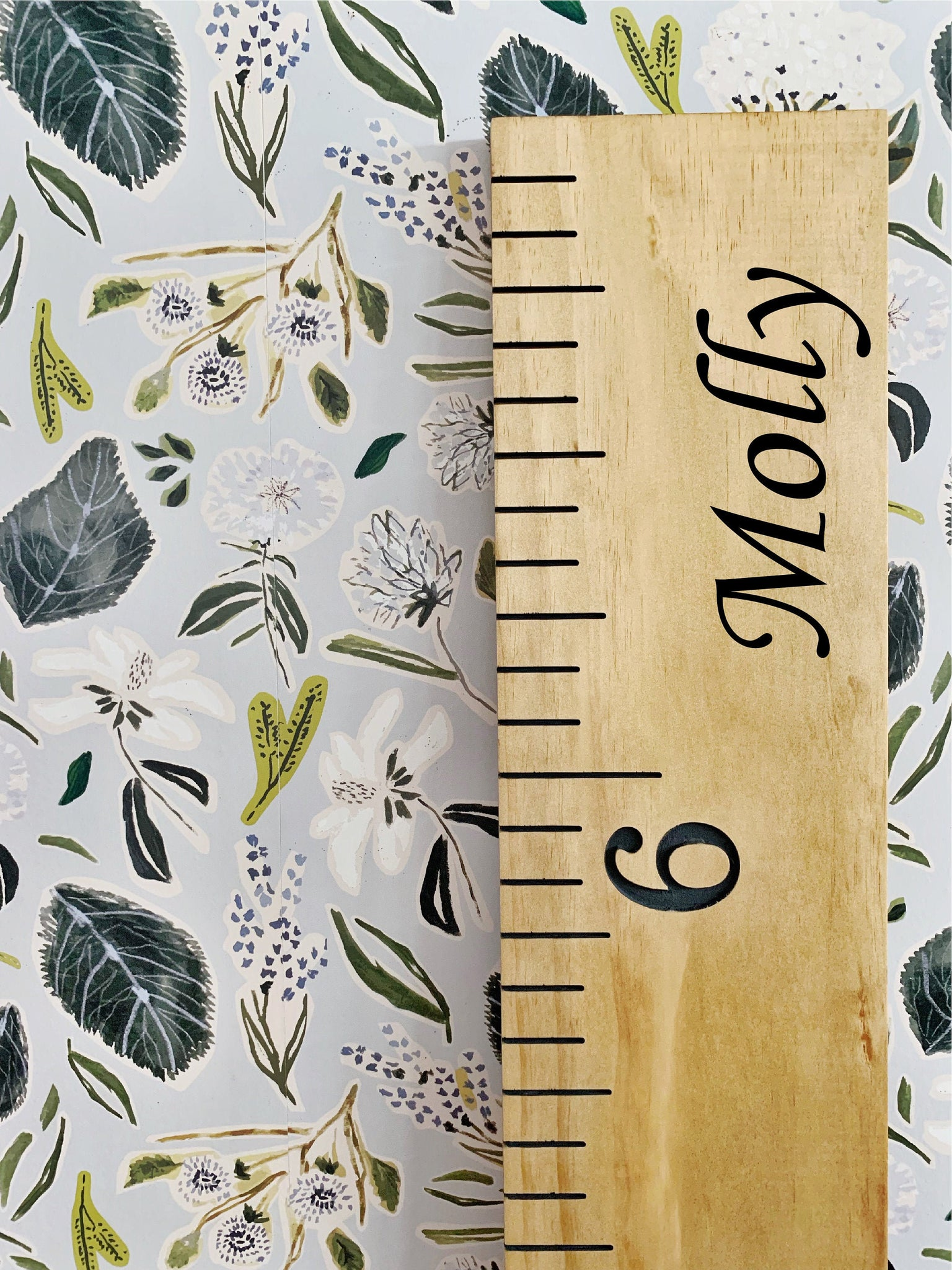 Molly Edition : Engraved Growth Chart
