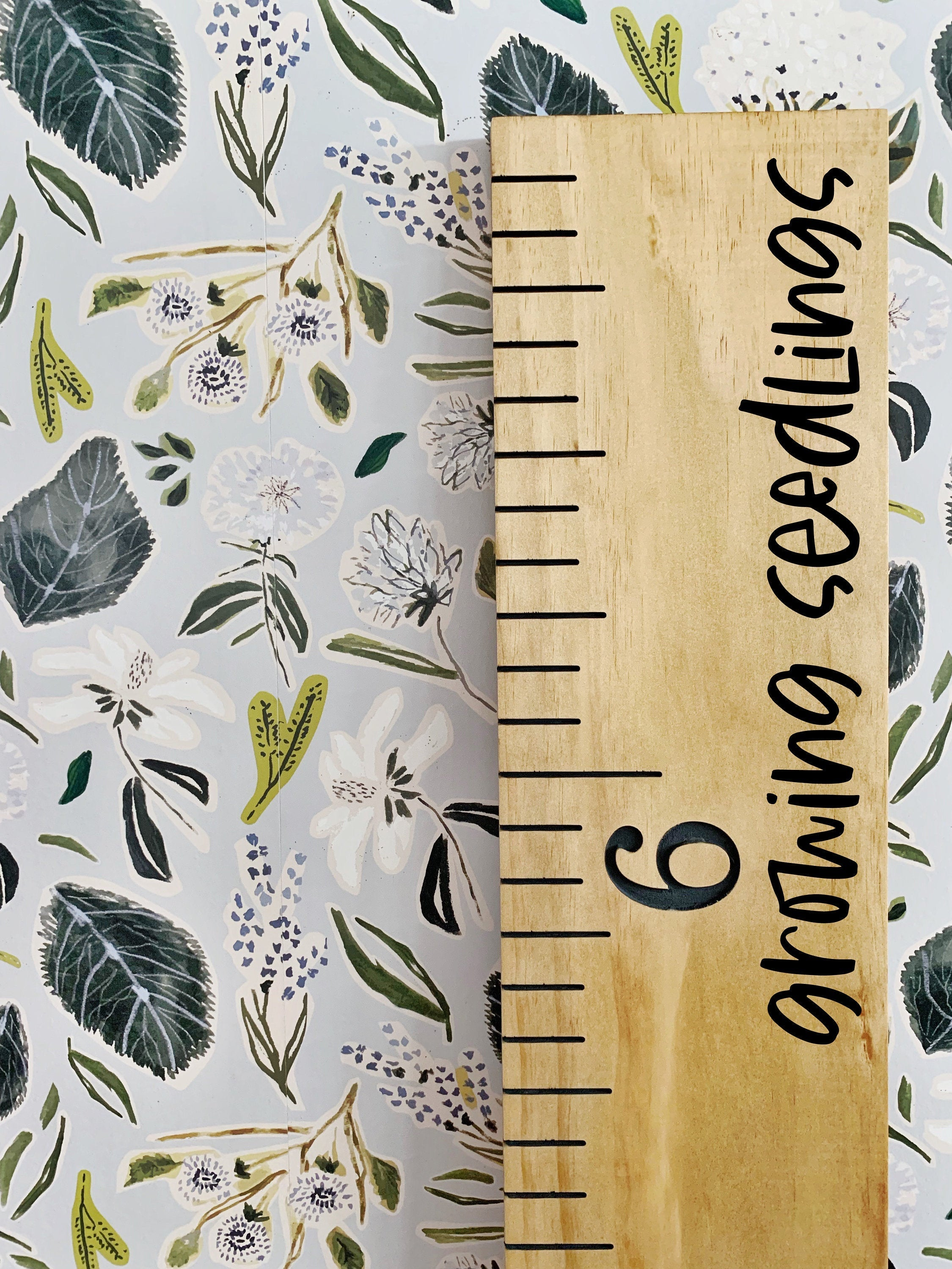 Growing Seedlings Edition : Engraved Growth Chart