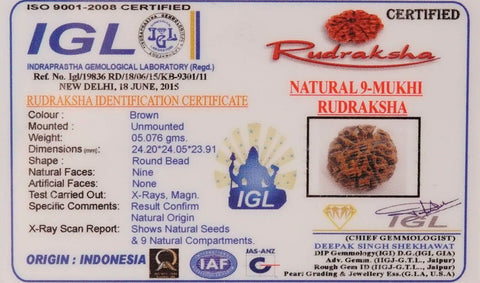 Image of Nine Mukhi 05.076 gm Rudraksha
