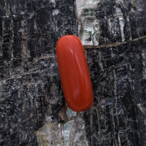 Image of 100% Original 5.85 Ct Red Coral