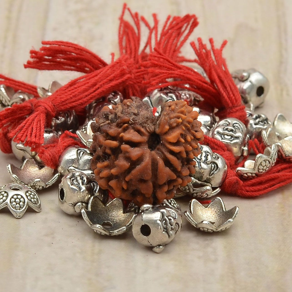 Top Quality  Certified Nine Mukhi Rudraksha