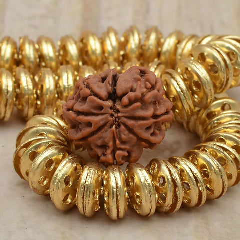 Image of 100% Best Quality Certified 8 Mukhi Rudrakshas