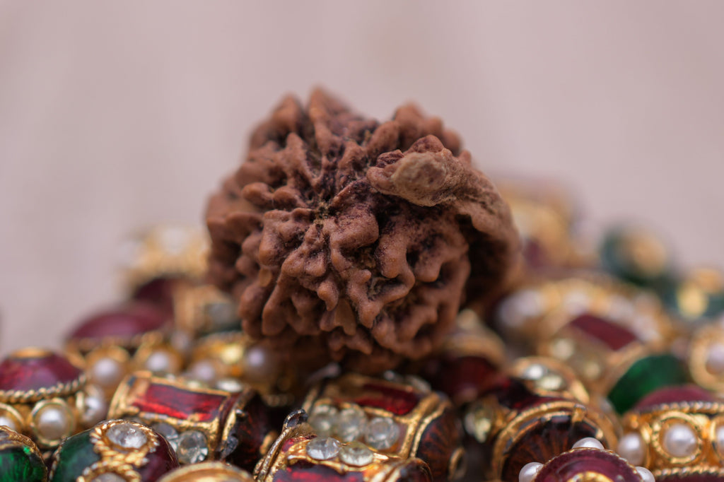 Genuine Certified  Best Quality 5 Mukhi Rudrakshas From Nepal