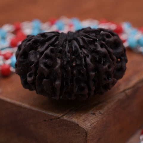 Image of Twenty One Mukhi Nepali Natural Rudraksha