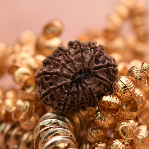 Image of Natural Nepali Certified 12 Mukhi Rudraksha