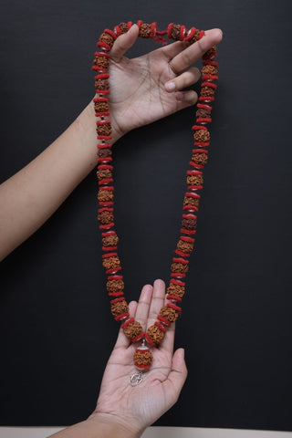 Image of Nepali Natural Round One Mukhi Beads Mala