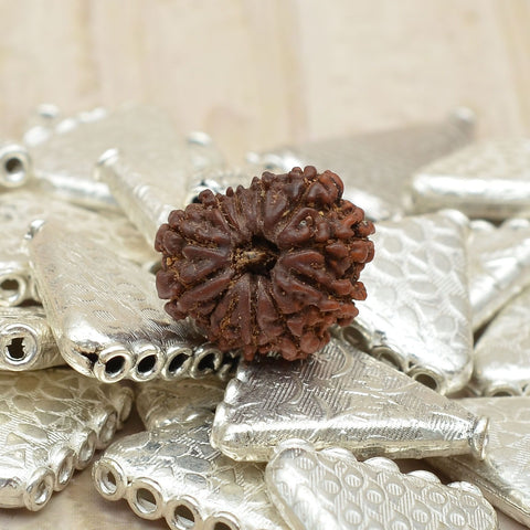 Image of Unmounted Certified Best Quality 11 Mukhi  Rudraksha