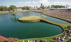 Where else to play when you have to play TPC Sawgrass
