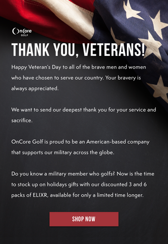 Veterans day email