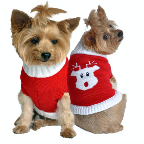 Rudolph Dog Christmas Sweater