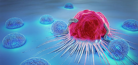 Decreased Risk of Certain Cancers