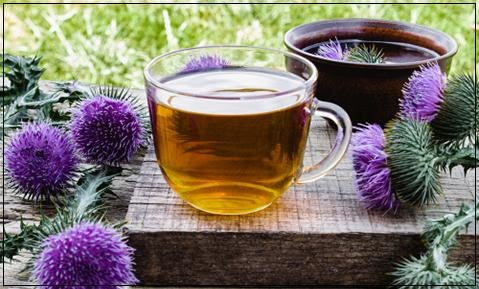 How to Consume Milk Thistle