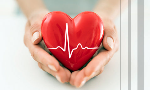 Support Heart Health