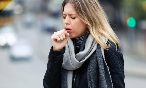 Basil Leaves are Also Beneficial for Cough