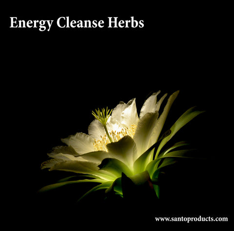 Cleansing Herbs