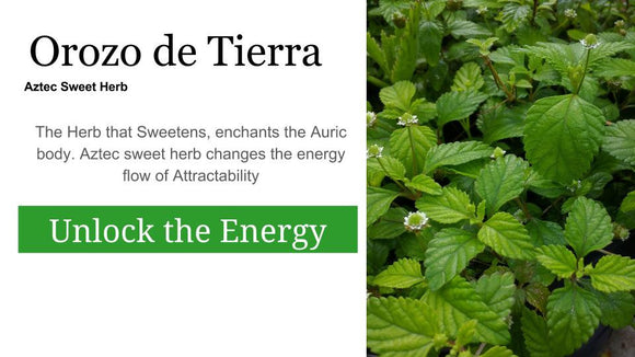 Orozo de tierra Aztec Sweet Herb: 1 oz Santo Products