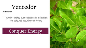 Palo Vencedor Tababuia vitex: 2 oz Santo Products