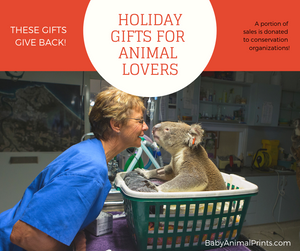 Gifts that Give Back for Animal Lovers