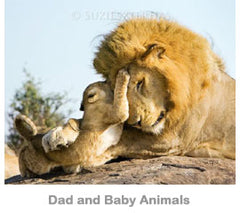 Dad and Baby Animals
