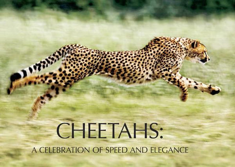 Cheetah Book by Laurie Marker and Suzi Eszterhas