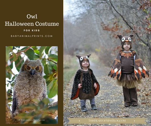 Homemade owl Halloween Costume for Kids