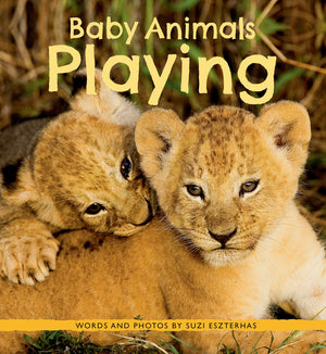 Baby Animals Playing Book