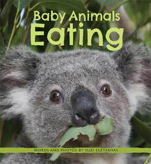 Children's Book, Baby Animals Eating