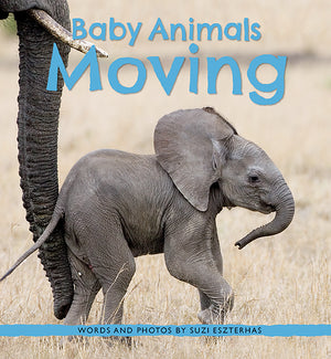 Baby Animals Moving Book