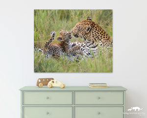 Leopard Mother Playing with Cub Photo