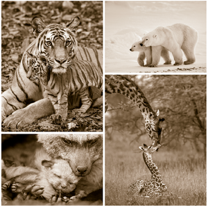 Mom and Baby Animal Print Set  in Sepia