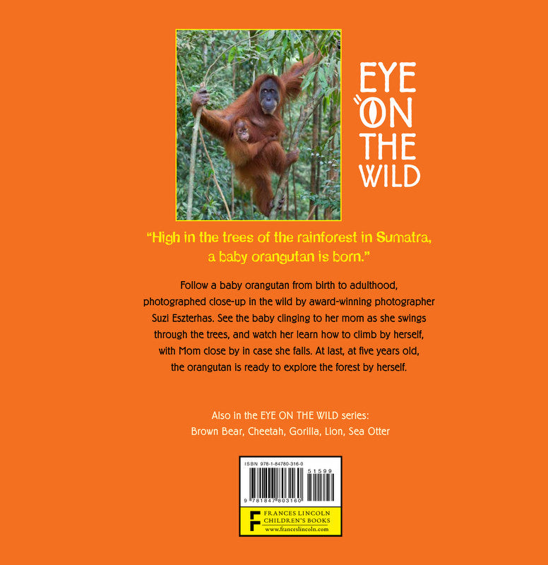 Children S Book Back Cover : Children s book quot eye on the wild ⎯ orangutan baby