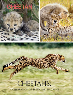 Cheetah Lovers Bundle