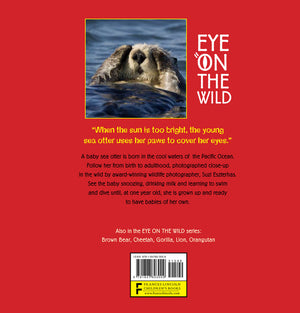 sea otter book back cover