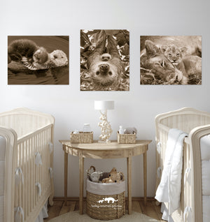 Snuggle Baby Animals Photo Set (Sepia)