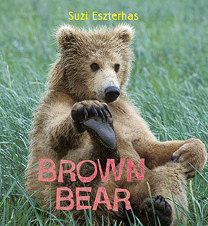 baby brown bear book