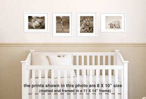 mom and baby animal sepia photos over crib