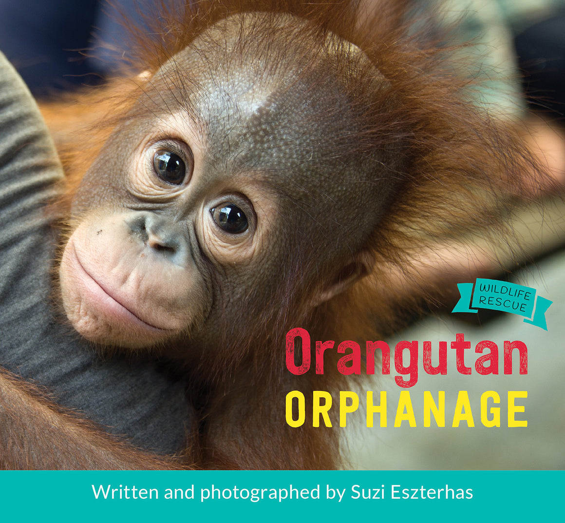 orangutan orphanage book