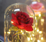 Load image into Gallery viewer, Enchanted Eternal Rose in Glass Dome