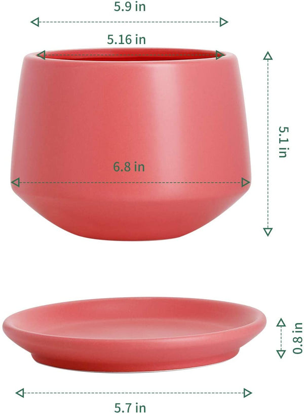 "5.9"" Ceramic planter with drainage hole and saucer"