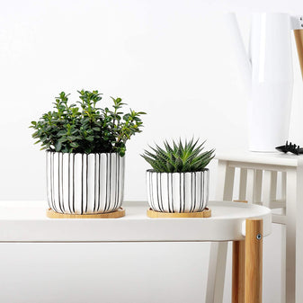 Premium ceramic planters and garden accessories delivered to your home.