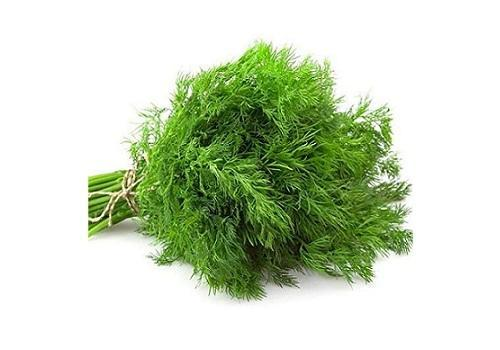Soya leaves/Dill fresh (Price per 250gms)