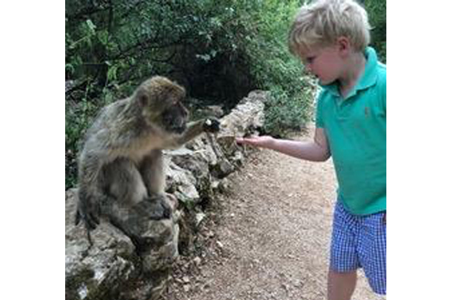 Hillary McCoy's child with monkey