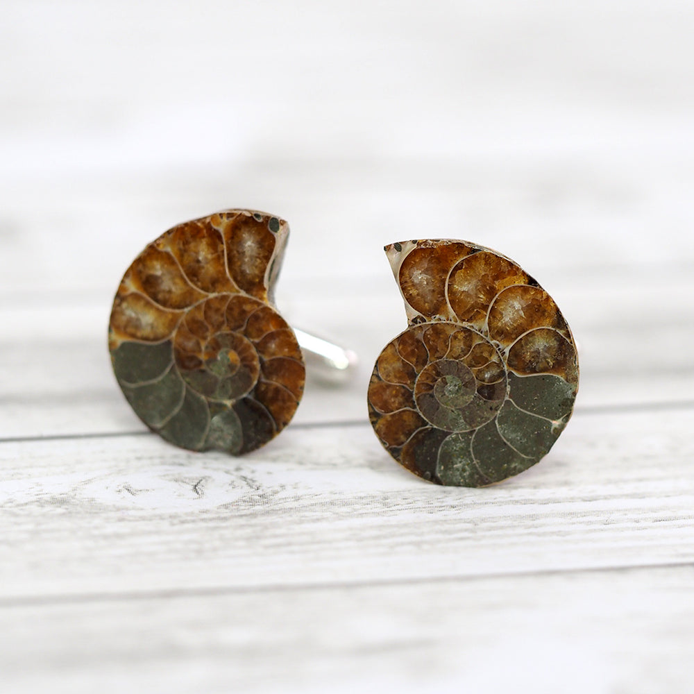 Load image into Gallery viewer, Ammonite Fossil Cufflinks