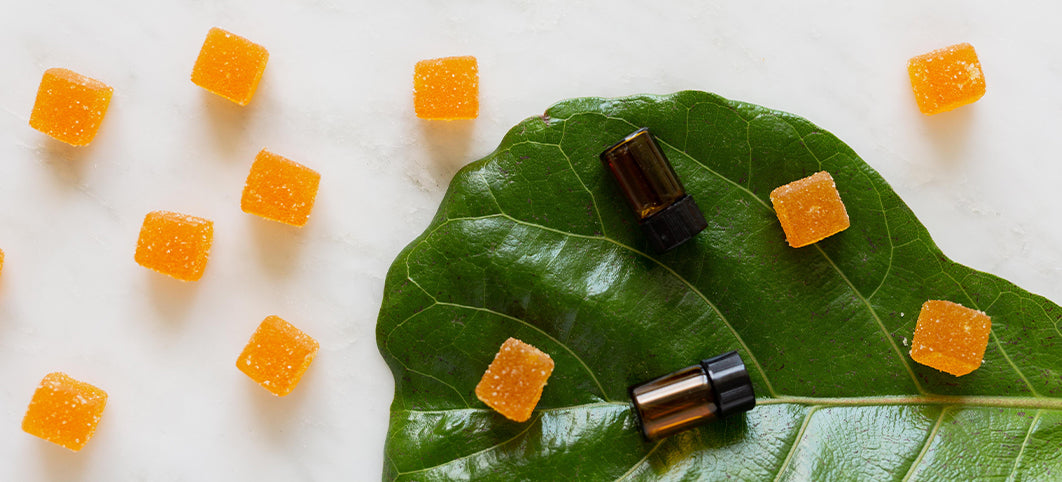 Everything You Need To Know About CBD Edibles