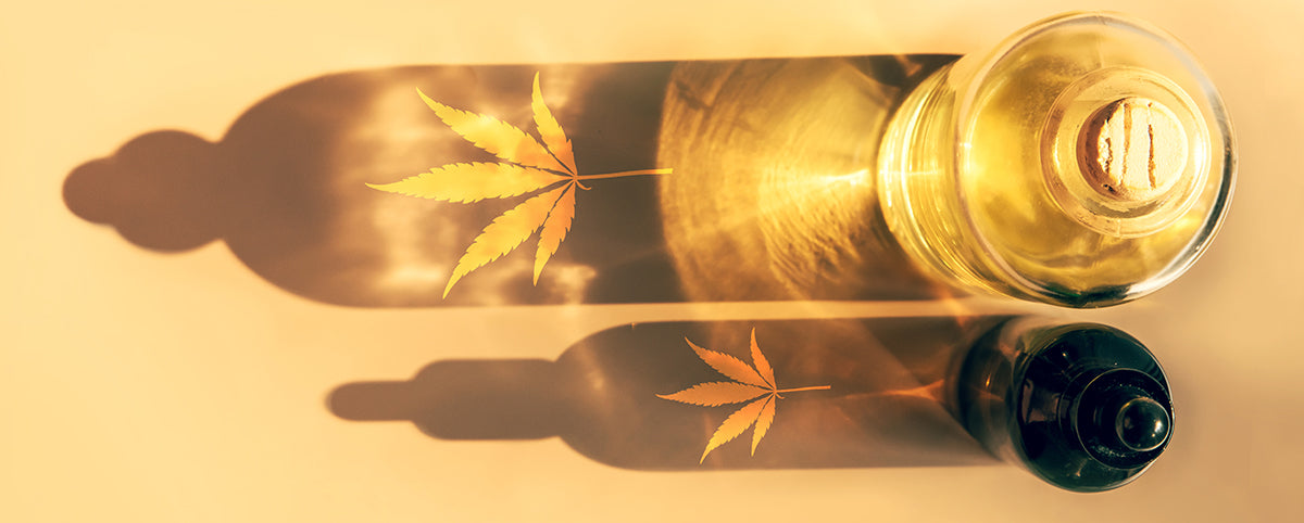 What Is The Difference Between CBD Oil and Raw CBD Oil